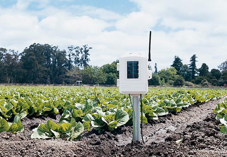 Wireless Leaf & Soil Moisture:Temperature Station 02